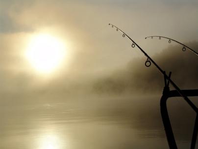 Dónde pescar
