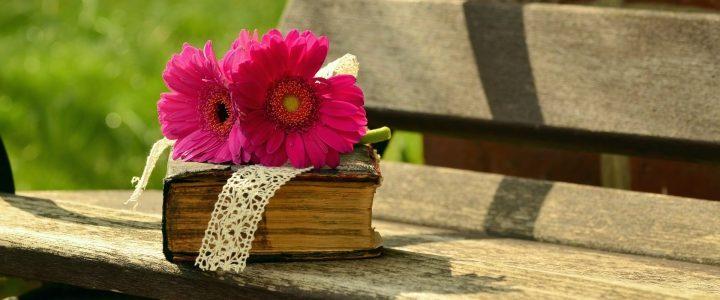 libros - Caldaria
