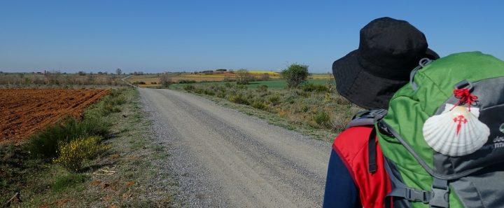 Camino de Santiago - Caldaria