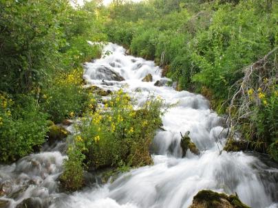 Agua en la naturaleza - Caldaria