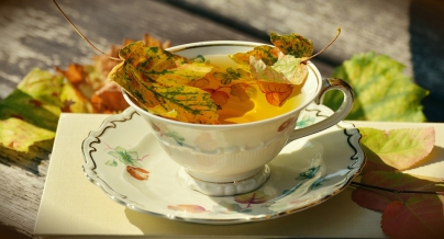 Infusiones otoño - Caldaria