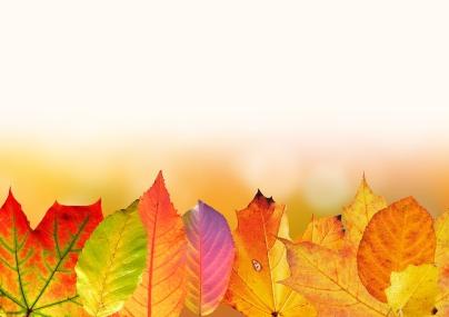 Colores del otoño - Caldaria