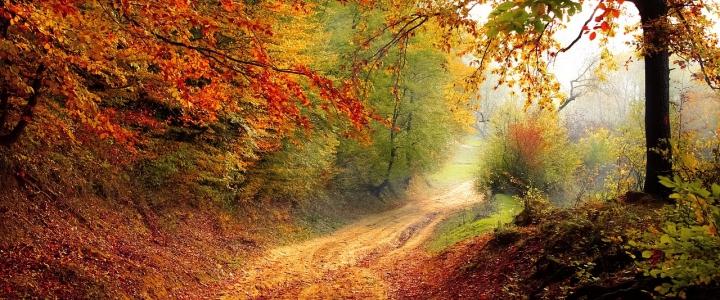 Paisaje de otoño - Caldaria
