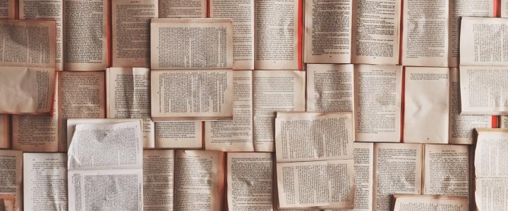 Libros en balnearios - Caldaria