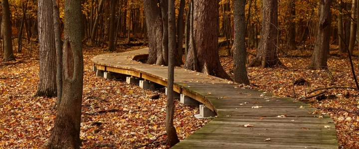 Escapadas otoño - Caldaria