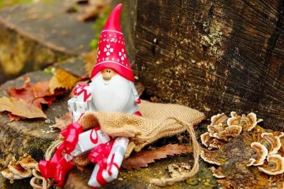 Navidad - Caldaria