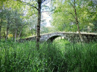Puente en la Ribeira Sacra