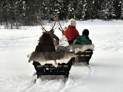 Trineo en Laponia