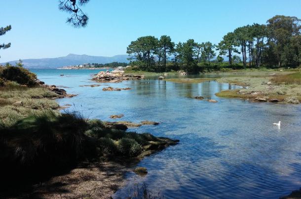 Playa de Carreirón