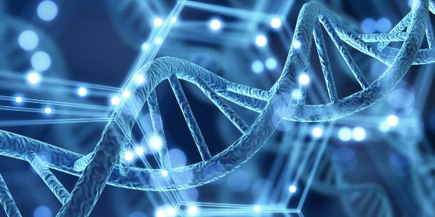 ADN y felicidad