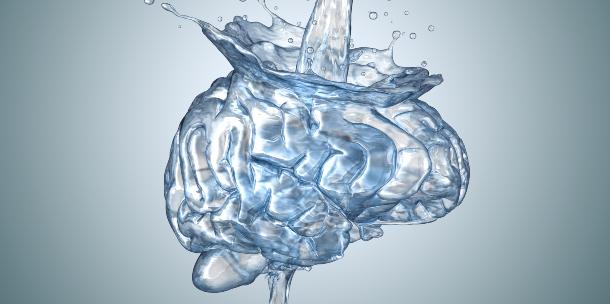 Cerebro y agua